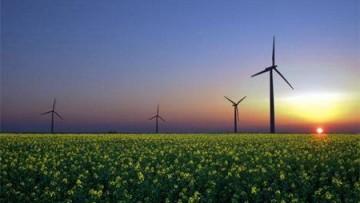 Le rinnovabili nel mondo