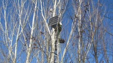 Foreste urbane, sensori meteo per la salvaguardia
