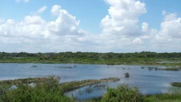 Giornata mondiale della biodiversita' 2013, il Rapporto Legambiente
