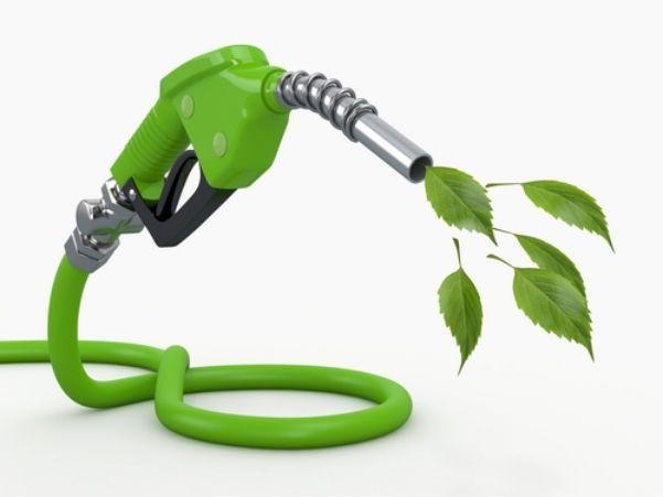 wpid-16000_biocombustibile.jpg