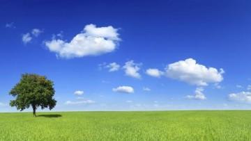 Autorizzazione unica ambientale al via il 13 giugno