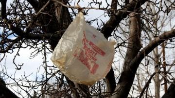 L'Ue potrebbe bandire i sacchetti di plastica, come accaduto in Italia