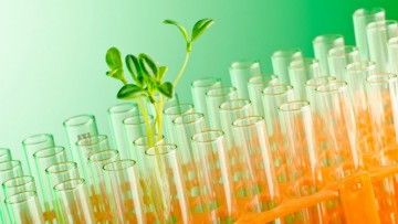 Parte Bio-Qed, progetto europeo per la chimica verde
