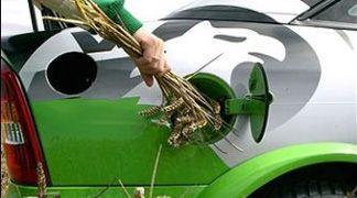 "Carburanti: decreto aumenta percentuale ""bio"" già dal 2010"