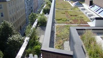 I tetti verdi di Triflex sono impermeabili, sicuri e durevoli