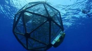 Con l'Aquapod una nuova tecnologia per l'itticoltura