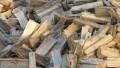 Energie da biomasse solide: istituito un Comitato per la tutela del settore